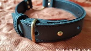 Bound Noir Nubuck Leather Collar close up of fastened collar on copper coloured background