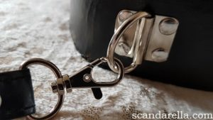 Scandarella's Paloqueth Bondage Set Review, image showing a close up of the D-ring on the front of a black leather collar, on a pale gold background covered with gold foil stars